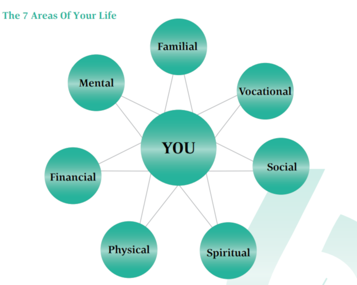 Infographic -green circles containing text of life areas with you in middle-surrounded by life areas- Familial-Vocational-Social-Spiritual-Physical-Financial and Mental