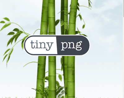 TinyPNG Logo In Front Of Tree